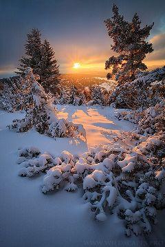 winter snow sun
