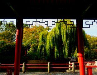 park japan garden