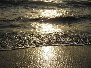 playa sansebastian chile
