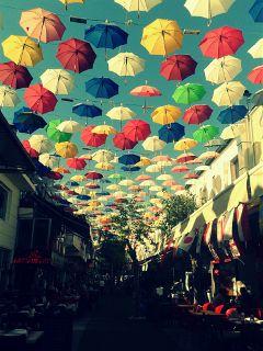 umbrella colorful summer vintage popart