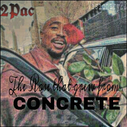2pac rapper actor poet activist revolutionary hiphop thug life words letters quotes color photography art tribute rose man real
