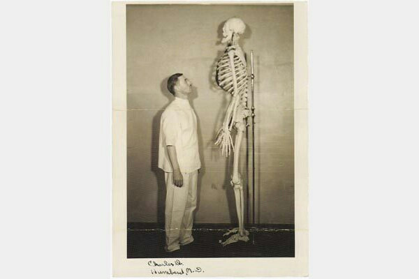 Giant  This is the skeleton of John Aasen (1890-1938) who was employed in the circus as a sideshow freak. John was 7'1/2″ (214cm) tall. Due to his height, he was also used in Hollywood movies. o_O