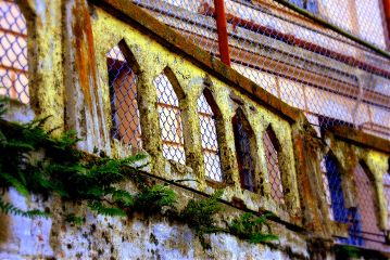 color splash photography alcatraz abandoned photojournalist